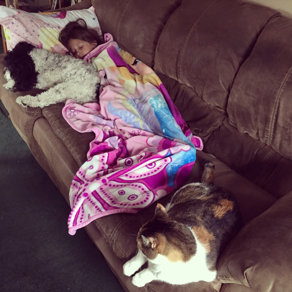 Julia wasn't feeling well this week but she had some fluffy friends to keep her company while she slept.