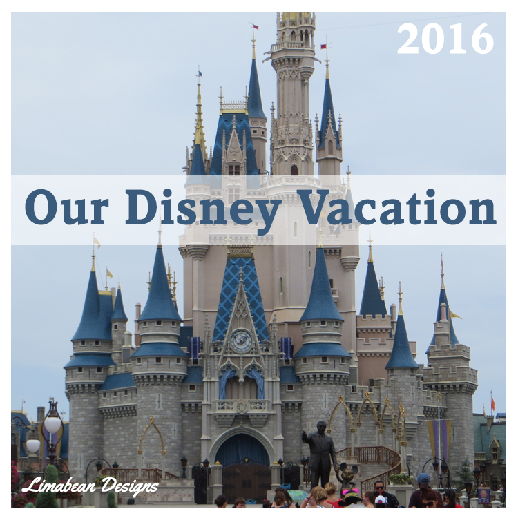 All About Our Disney Vacation 2016!